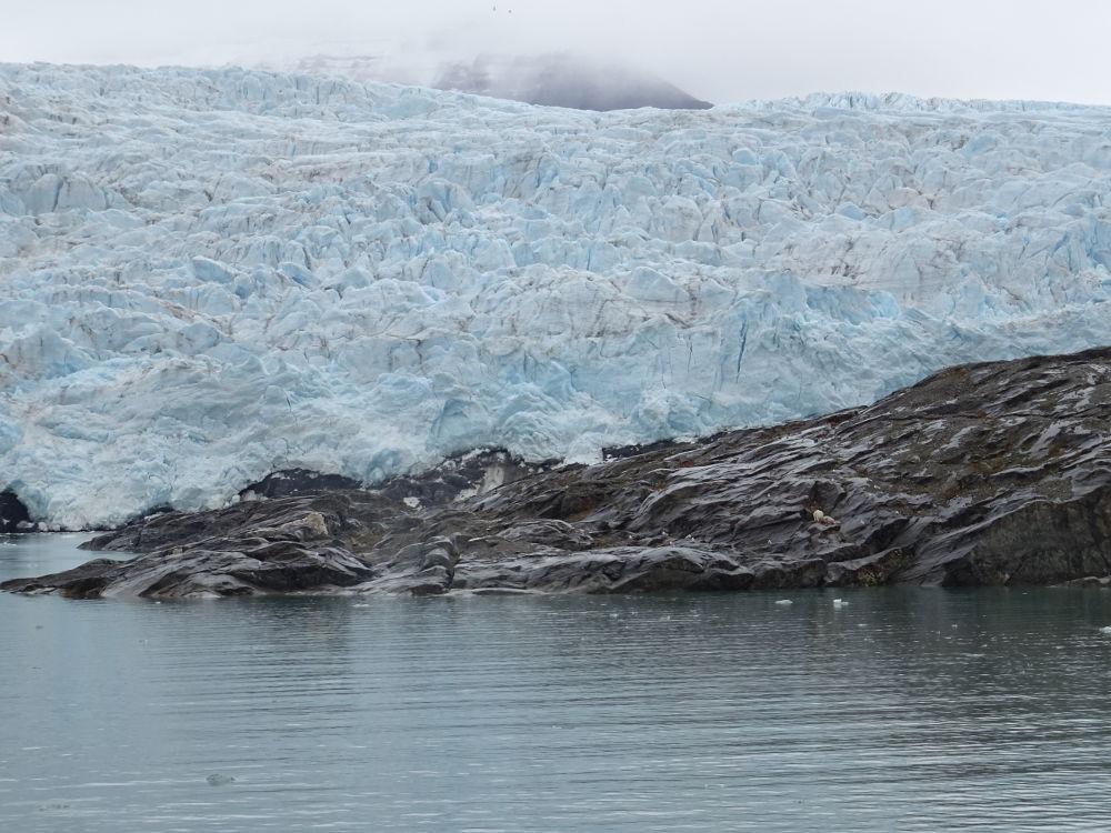 orsopolare-Pyramida-Svalbard
